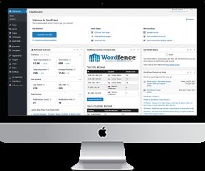 Website Maintenance Hosting Security | Show Up Strong Online